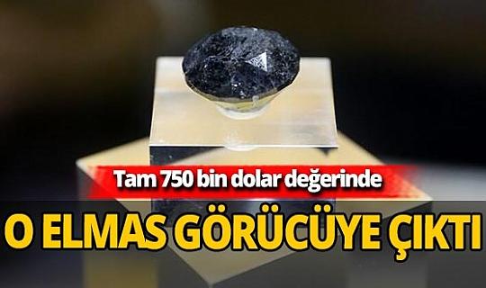 Çin'de 750 bin dolarlık 88 karat kara elmas görücüye çıktı
