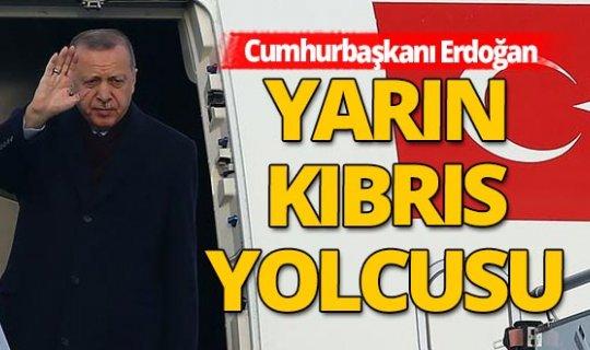 Cumhurbaşkanı Erdoğan yarın yavru vatana gidicek