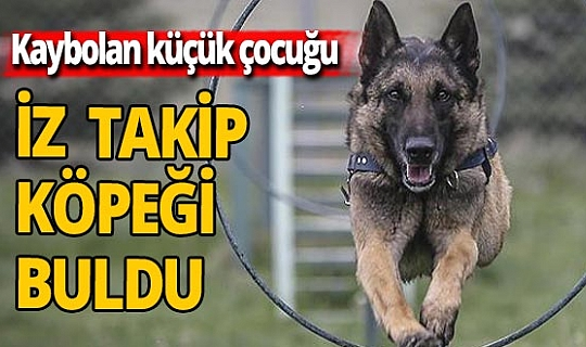 Elazığ'da kaybolan 13 yaşındaki çocuğu eğitimli köpek buldu