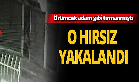 Gaziantep'in örümcek hırsızı polisin operasyonuyla yakalandı