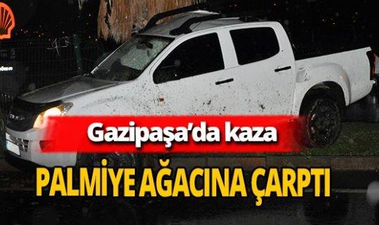 Gazipaşa'da otomobil palmiye ağacına çarptı