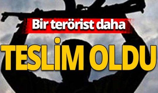 İçişleri Bakanlığı: 1 terörist ikna yoluyla teslim oldu
