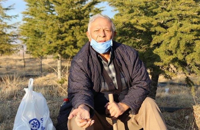 Konya'da bozkırı 20 yılda ormana çevirdi