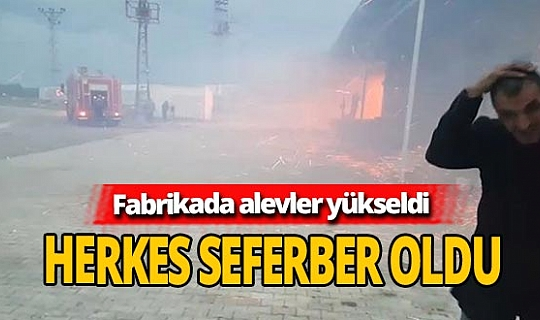 Korkutan yangın! Zeytinyağı fabrikası alev aldı