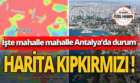 Koronavirüs vakaları Antalya'da katlanarak arttı! HES'te semtler kıpkırmızı oldu