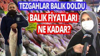 Balık fiyatları ne kadar ? Taze balık nasıl anlaşılır? Tezgahlarda son durum ne?