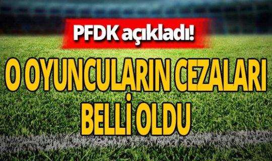 PFDK açıkladı! Fenerbahçe maçından sonra Sinan Gümüş ve Adis Jahovic'in cezaları belli oldu