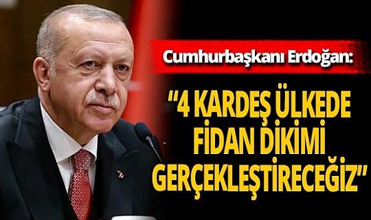 """Son dakika! Cumhurbaşkanı Erdoğan: """"4 kardeş ülkede fidan dikimini gerçekleştireceğiz"""""""
