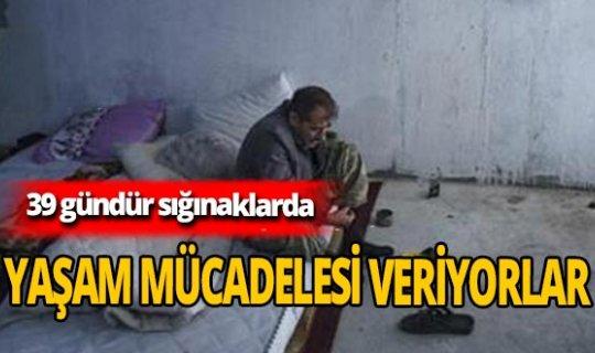 Terter'deki siviller 39 gündür sığınaklarda yaşıyor