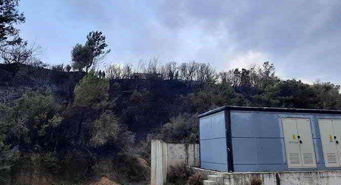 Çalılık alan cayır cayır yandı