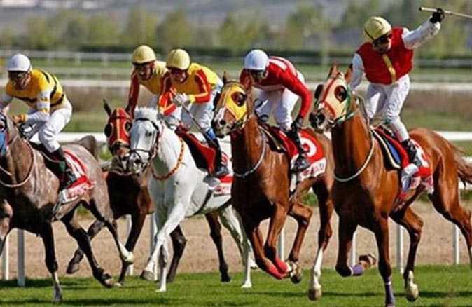 TJK'dan borcu olan at sahiplerine müjde! Vade farkı ve cezaları silindi