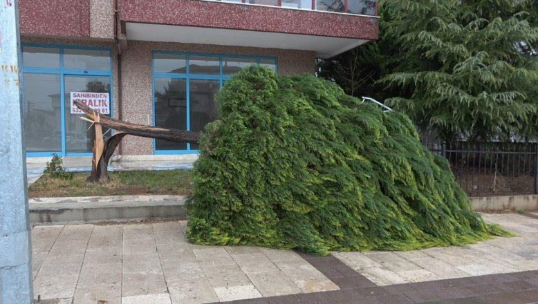 Antalya ve 4 il için fırtına uyarısı