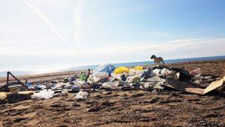 Aksu Kumköy Sahili'nde plaj temizliği