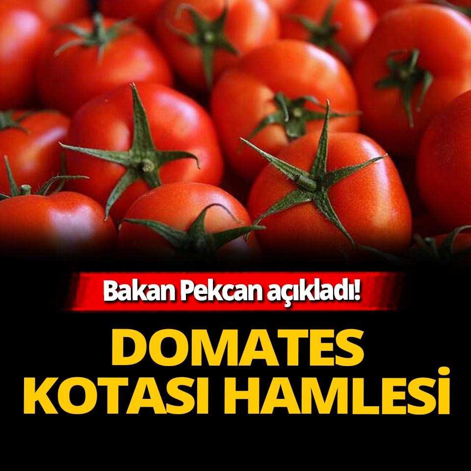 Bakan Pekcan açıkladı! Rusya'dan 'domates' kotası hamlesi: 250 bin tona yükseltildi