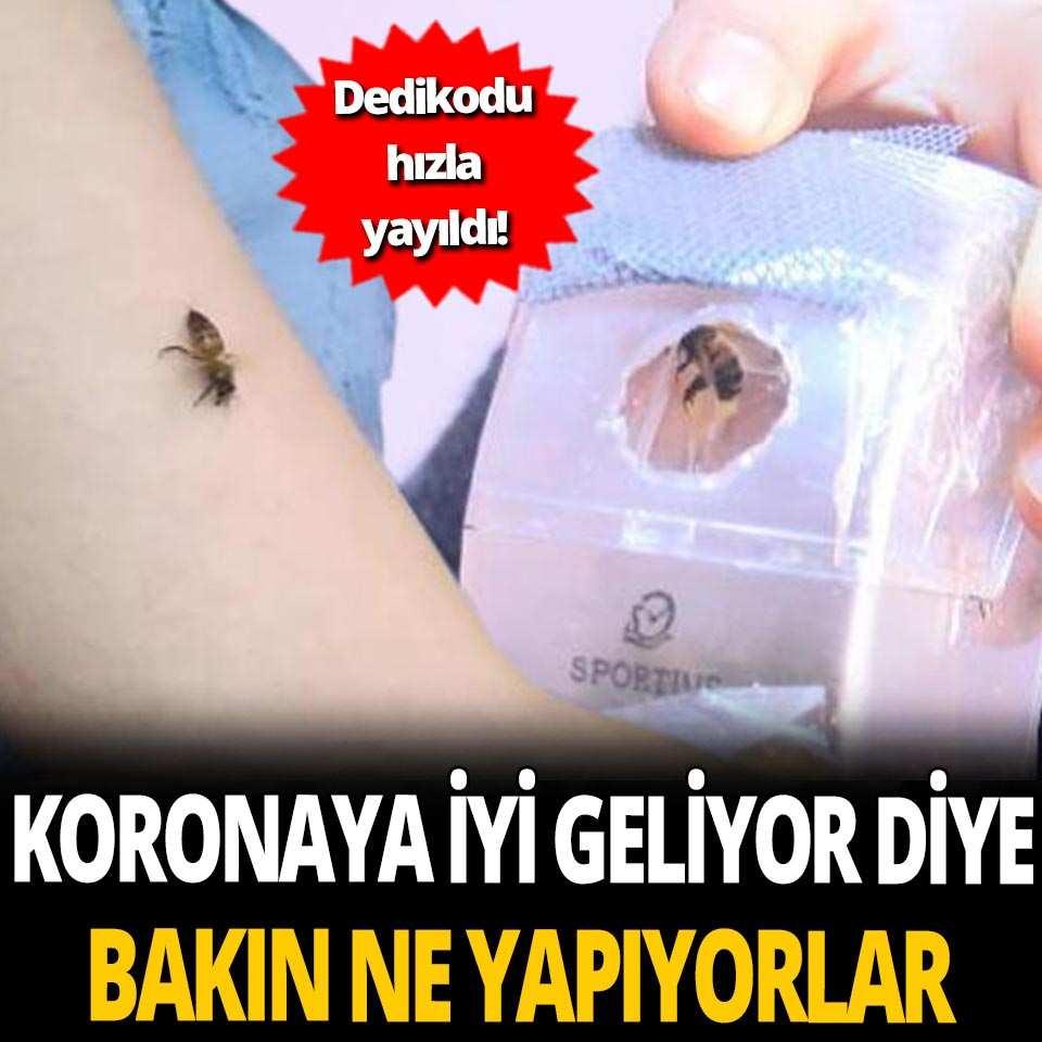 Koronaya iyi geliyor diyerek kendilerini arılara ısırtıyorlar