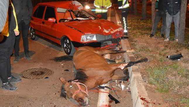 Ahırdan kaçan atlara otomobil çarptı