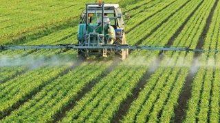 Antalya Hal Derneği Başkanı verileri açıkladı: 'Sebze ve meyve üretimi düştü'