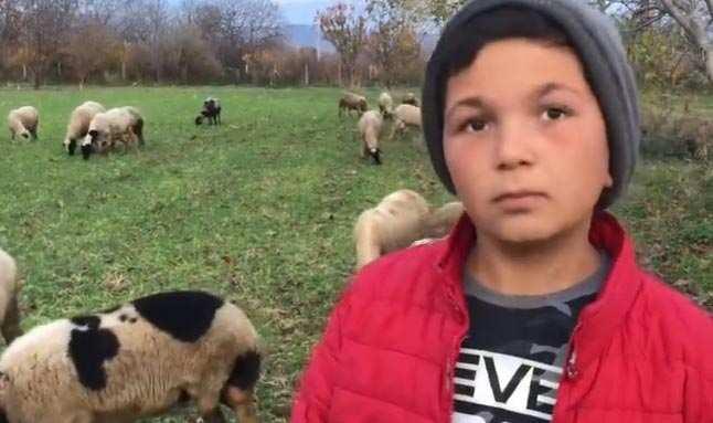 12 yaşındaki küçük çoban sosyal medyanın yeni fenomeni