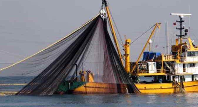 Balıkçılara kötü haber! Hamsi yasağı uzatıldı