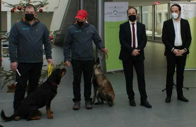 Köpekler koronavirüs taraması yapacak