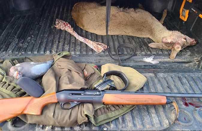 Nesli tükenen karacayı ve 3 tahtalı güvercini öldürdü!