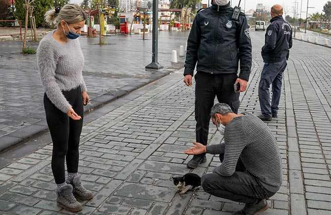 Vatandaşlar yaralı kedi için seferber oldu