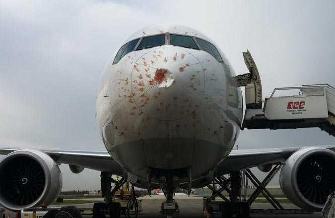THY kargo uçağı acil iniş yaptı