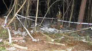 Kıbrıs gazisi Necaettin Karabulut ağacın altında kalarak hayatını kaybetti