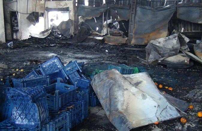Antalya'da yangının zararı 6 milyon lira