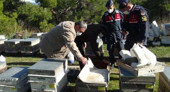 Çalınan arılarını Manavgat'ta buldu