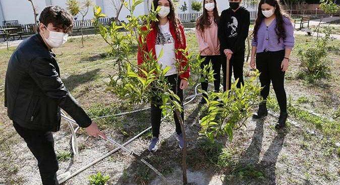 Antalya'da 2 bin okulun meyve bahçesi olacak