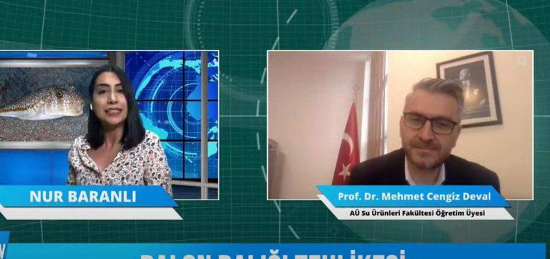 Bizden Duy 15 Şubat 2021 Prof. Dr. Mehmet Cengiz Deval ile balon balığının tehlikesini konuşuyoruz