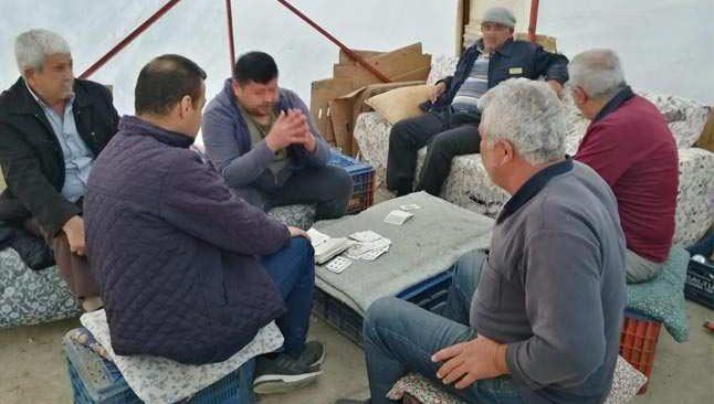Antalya'da baraka baskını