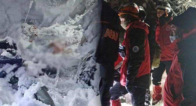 15 saattir aranan genç doktor ormanlık alanda ölü bulundu