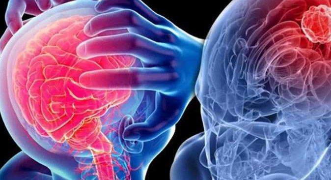 Omurilik soğanı nedir? Vücutta hangi işlevi görür?