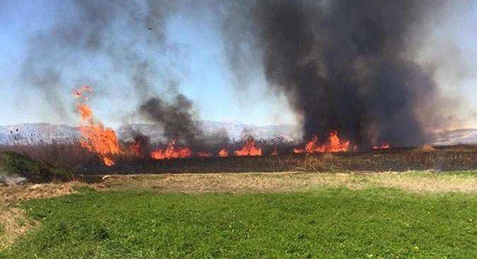 Kaş'da sazlıkların bulunduğu arazi cayır cayır yandı