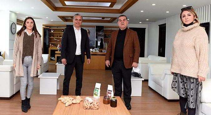 Muratpaşa Belediyesi zencefil üretecek