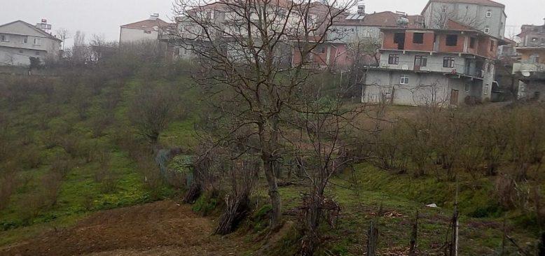 Muhtar 25 köylüyü icraya verdi