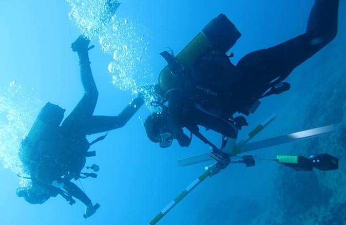 Akdeniz'de 50 bin gemi batığı bulunduğu tahmin ediliyor