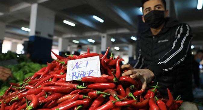 Gıda Mühendisleri Odası Antalya Şube Başkanı Manavoğlu: Acı biber mutluluk veriyor