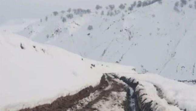 Afganistan'da çığ düştü!