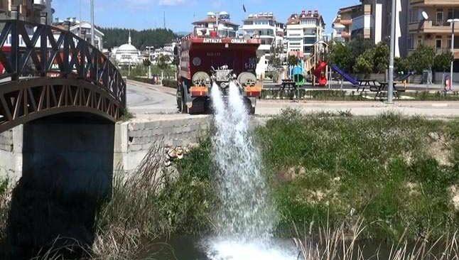 Antalya'da balıkların öldüğü kanala su takviyesi