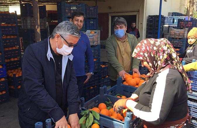 Başkan Topaloğlu portakal kasalayan kadınlarla buluştu