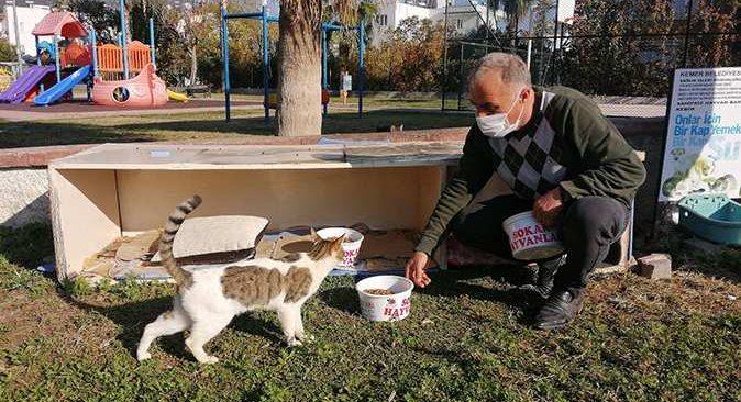 Kemer Belediyesi bir ayda 27 sokak hayvanı sahiplendirdi