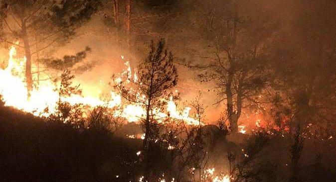 Manavgat'ta 1 hektarlık bozuk kızılçam ormanı alev alev yandı