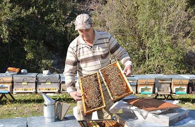 Antalya'da bal üreticileri yeni sezona hazırlanıyor