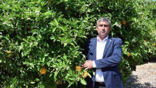 Başkan Hidayet Kökce'den portakal üreticilerini sigorta uyarısı