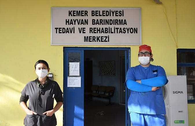 Kemer Belediyesi tam kapanma süresince can dostlarının yanında