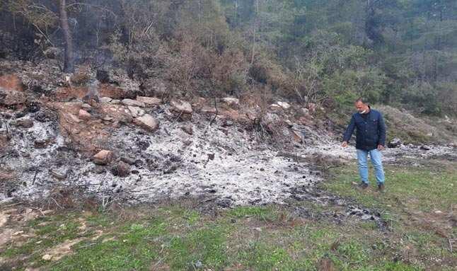 Antalya'da yangını fırsat bilip ağaçları kestiler