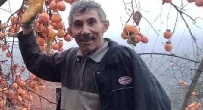 Zonguldak'ta kestiği ağacın altında kalan Hayrullah Lülleci hayatını kaybetti